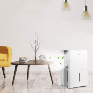Best Dehumidifier and Air Purifier