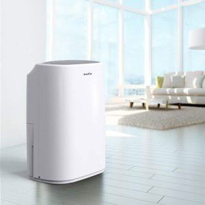 Best Dehumidifier for 1000 Sq Ft