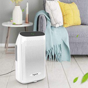 Best Dehumidifier for 3 Bedroom House