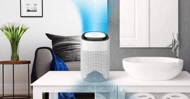 Best Dehumidifier with Air Purifier