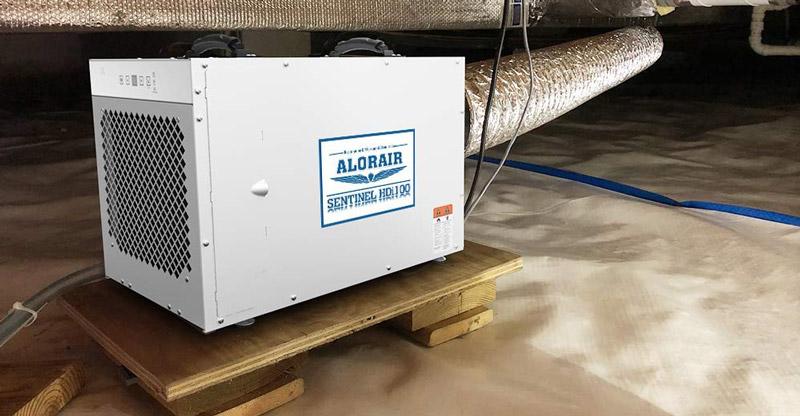 Alorair Dehumidifiers Reviews