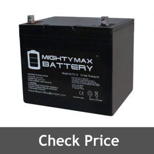 Mighty Max Sump Pump Battery