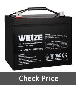 Weize 12V 75AH Battery