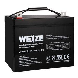 best sump pump battery
