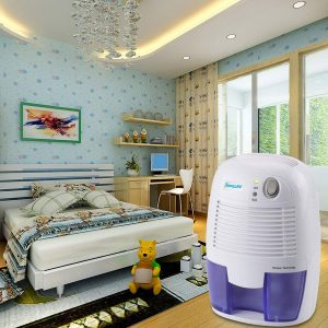 Best Dehumidifiers for Allergy Sufferers reviews