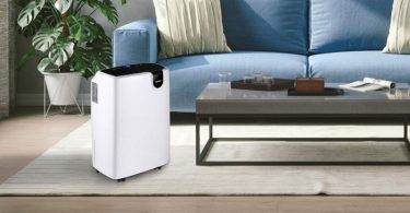 Best Dehumidifiers for Small Apartment