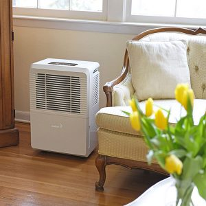 Best dehumidifier for under house reviews