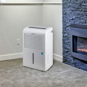 best dehumidifier for dust mite allergy reviews