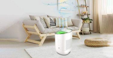 Best Single Room Dehumidifiers